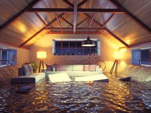 emergency water removal dallas, water removal dallas, water extraction dallas